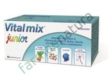 VITALMIX JUNIOR INT 12FL